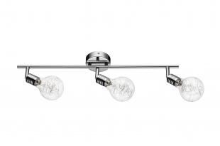 Bulbs 2507328